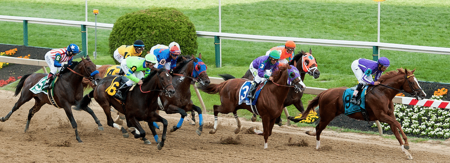 2016 Preakness Stakes