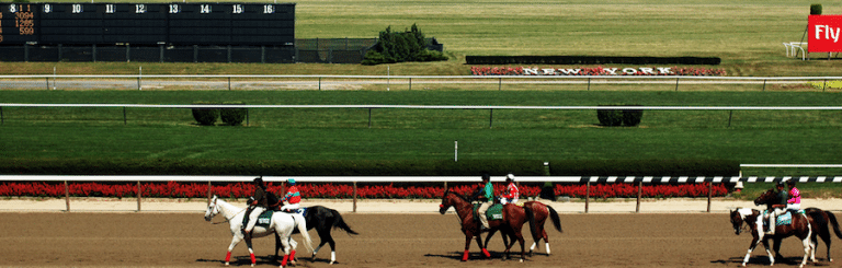 Best Betting Sites for the 2016 Belmont Stakes