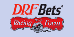DRF Bets
